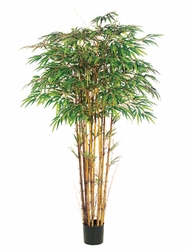 Set of 2 - Silk Bamboo Trees 6'
