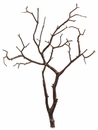 "Set of 4 - 27"" Real Wood Tree Branches"