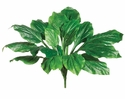 "Set of 5 - 22"" Artificial Hosta Plants"