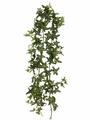 5.5' Artificial Medium Sage Ivy Garland - Set of 6