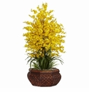 Silk Oncidium Orchids