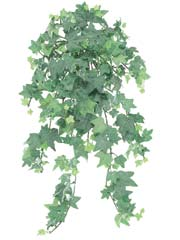 "23"" Artificial Flocked English Ivy Silk Ledge Bush with 295 Leaves -Set of 12"
