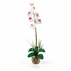 "27"" Single Phalaenopsis Liquid Illusion Silk Flower Arrangement"
