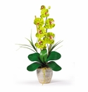 "21"" Single Stem Phalaenopsis Silk Orchid Arrangement in Green"