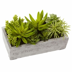 "6.5"" Artificial Succulent Garden with Concrete Planter"