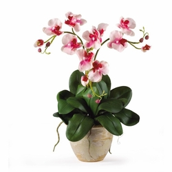Triple Mini Phalenopsis Silk Orchid Arrangement