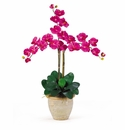 Triple Stem Phalaenopsis Silk Orchid Arrangement