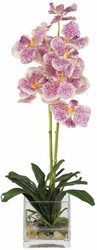 "21"" Vanda w/Glass Vase Silk Flower Arrangement"