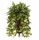 "36"" Vining Mixed Greens with Decorative Stand Silk Plant"
