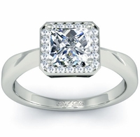 Princess Cut Halo Setting