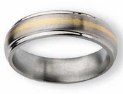 Titanium and Gold Wedding Band