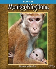 Monkey Kingdom Blu-ray Single Disc