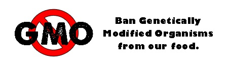 Ban GMO's From Our Food Bumper Sticker