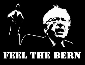 Image result for feel the bern photography