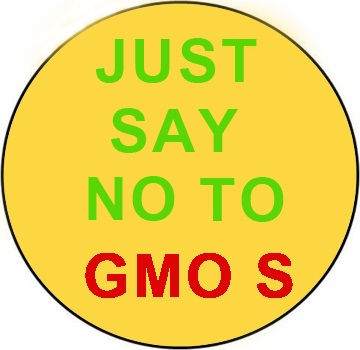 Just Say No To GMOS Yellow Magnet - 3""