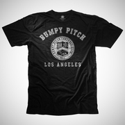 Bumpy Pitch Los Angeles