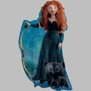 Disney's Brave Merida Shape