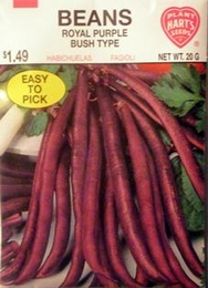 Bean Royal Burgundy