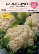 Cauliflower Early Snowball