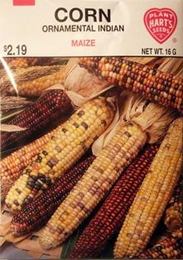 Corn Ornamental Indian