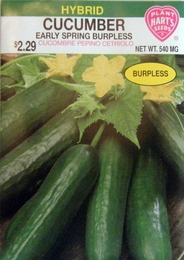 Organic Cucumber Early Spring Burpless