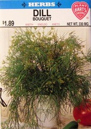 Herb Dill Bouquet