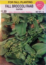 Broccoli Fall Raab