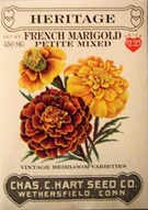 Heritage French Marigold Petite Mixed