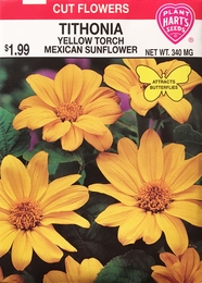 Tithonia Yellow Mexican Sunflower