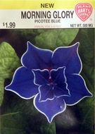 Morning Glory Pecotee Blue