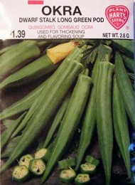 Okra Dwarf Stalk Long Green