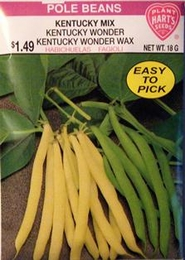 Pole Beans - Kentucky Mix