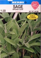 Herb Sage Broad Leaf