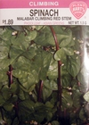 Spinach - Malabar Climbing Red Stem