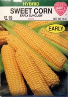 Corn Early Sunglow- Yellow