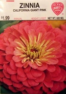 Zinnia California Pink