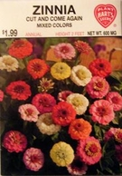 Zinnia Cut & Come