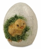 Bethany Lowe Hatching Chick