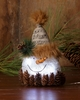 Lighted Snowman Head with Twinkle Lights Small