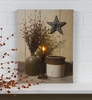 Radiance Lighted Canvas Billy Jacobs Crocks and Stars