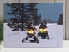 Radiance Lighted Canvas Snowmobile