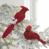 RAZ  7 inch Clip-On Cardinal Ornament