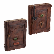 RAZ Halloween 10 inch Eyeball Resin Spell Books set of 2
