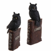 RAZ Halloween 11.5 inch Resin Spell Book with Owls set of 2