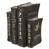 RAZ Halloween 9 inch Resin Spell Books