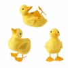 RAZ Yellow Fuzzy Ducks set of 3