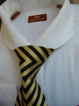 Steven Land White Cutaway Collar Dress Shirt