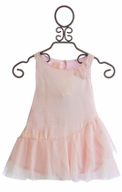 Baby Biscotti Infant Designer Dress in Pink