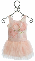 Biscotti A Rose Is A Rose Ruffle Dress (12Mos,18Mos,2T)