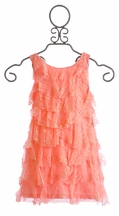 Biscotti Coral Lace Dress for Girls